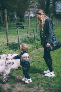 Petting Zoo In Ireland - Barefoot Blonde Amber Fillerup