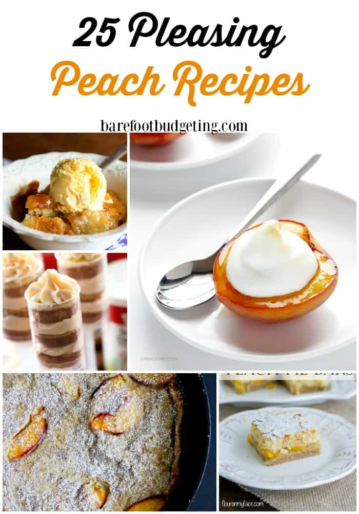 25 Pleasing Peach Recipes - check out these delicious peach recipes including drinks, desserts, appetizers, and more! Use up those Summer peaches before they go bad!