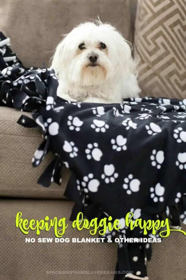 diy no sew dog blanket
