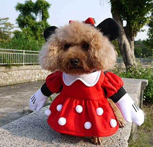 dog minnie mouse costume