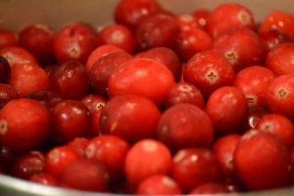 beautiful cranberries_small