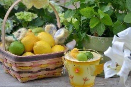 lemons limes and lemon balm_small