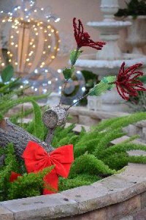my reindeer_small