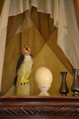 the falcon and the egg_small