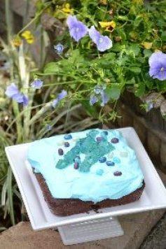 Pretty blue garden cake_small