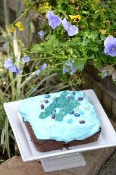 Pretty blue garden cake_small