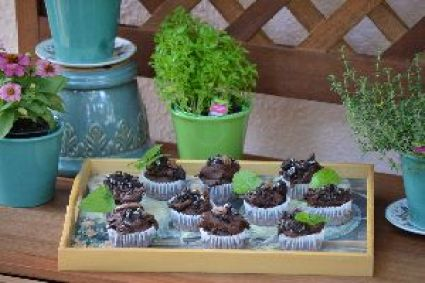 mudpie cupcakes with bugs 2_small