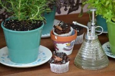 pots herbs bugs and cupcakes_small