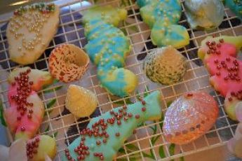cookies with shells_small