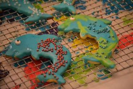 dolphin cookies_small