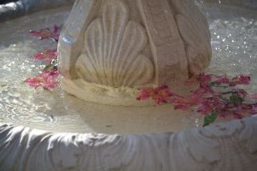 my fountain this morning 2_small
