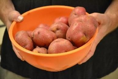 some red potatoes_small