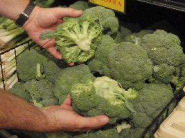 Broccoli without the stalk_small