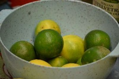 6 our key limes from our tree_small