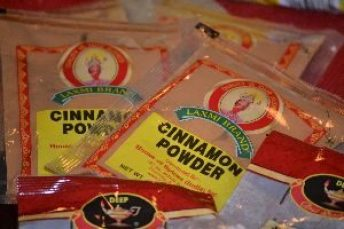 cinnamon powder_small