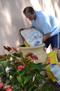 Adding_lots_of_potting_soil._small