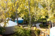 Barefoot Beach Resort Yurt