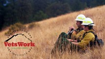 Forest Service Wildland Firefighter