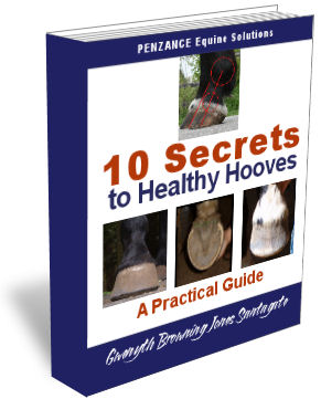 10 Secrets to Healthy Hooves