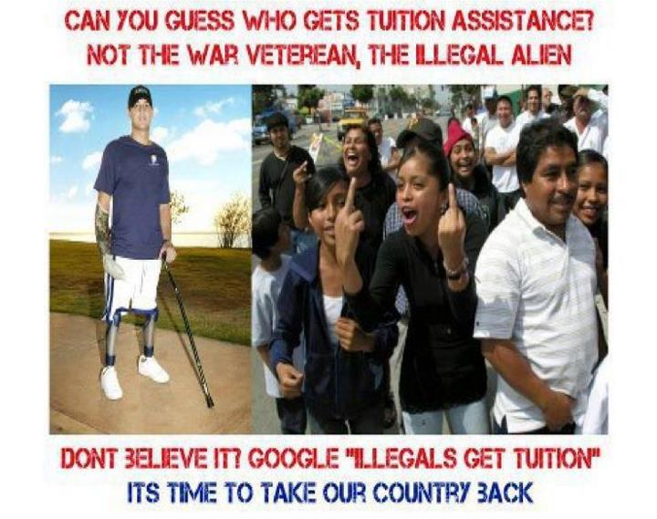 illegals-get-tuition