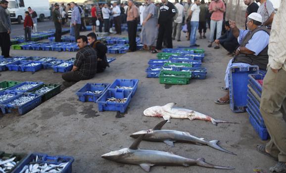 Palestinians sell fish at a fish market in Gaza City