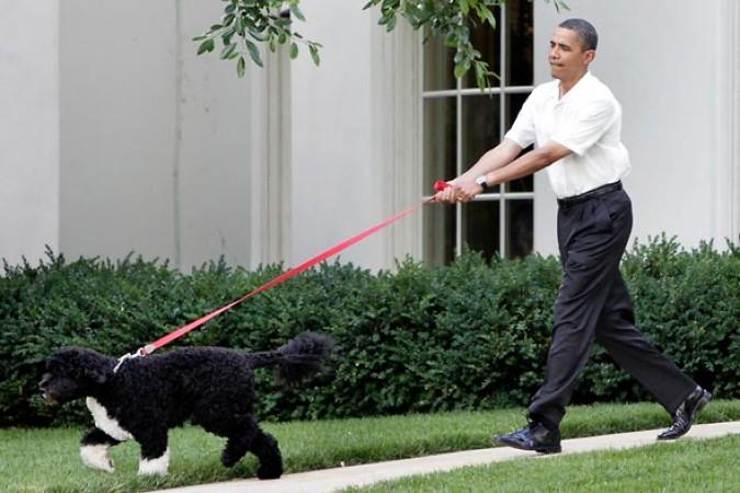presidente-obama-y-su-doggy_post