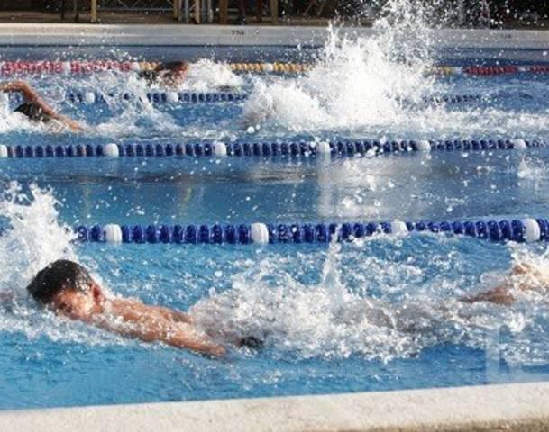 56337884-piscina