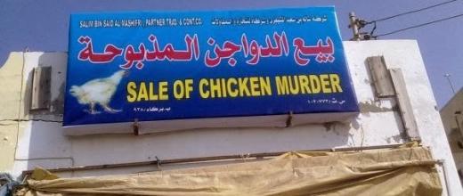 chicken-murder