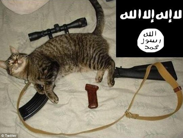 1414770614858_Image_galleryImage_Islamic_State_of_Cat_ISIL