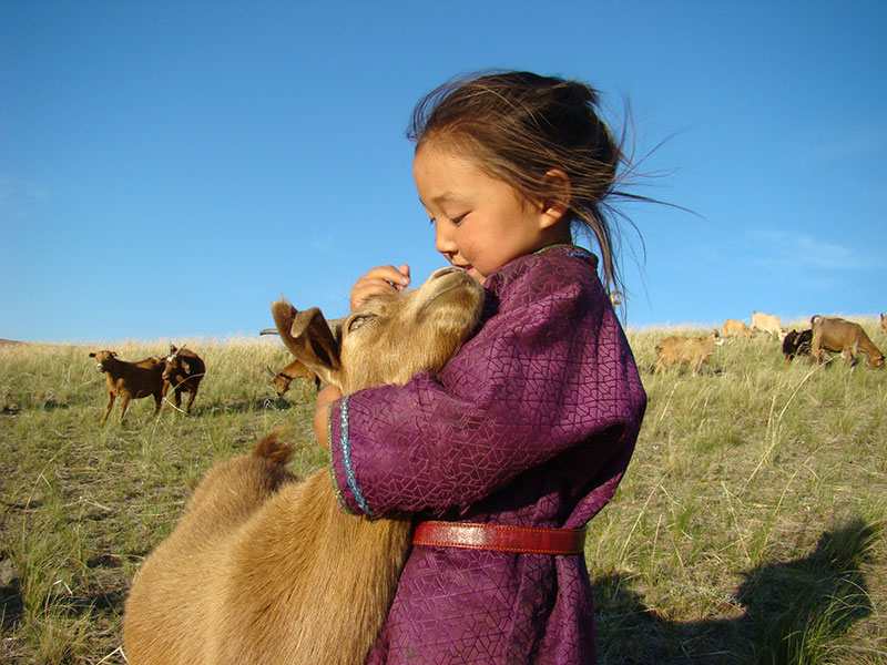 mongolia-child-and-goat