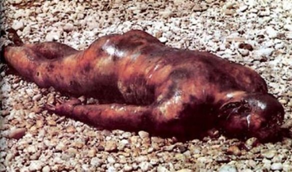 Bosnian Muslim military forces from Srebrenica killed Bosnian Serbs mutilated their bodies, then roasted the corpses