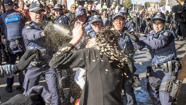 Police officer sprays PRO-ISLAMIZATION FASCIST