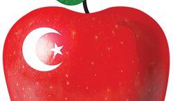 b1-gaffney-apple-iislam-gg_c0-549-1449-1395_s250x146