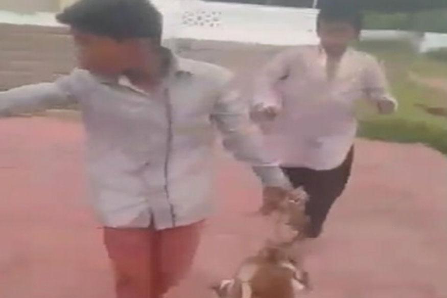 Los cachorros-Burnt-Alive