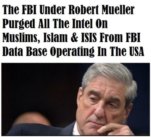 Image result for mueller whore