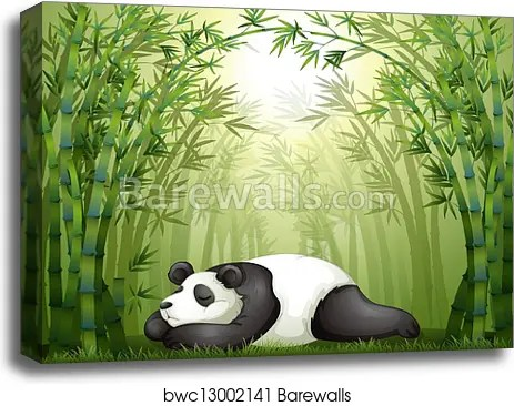 a panda sleeping between