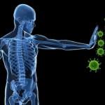 5 מרכיבים שיעזרו לכם לבנות מערכת חיסונית חזקה מתמיד