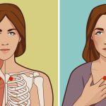 אלו הן נקודת האקופרסורה שיעזרו לכם בכאבי גרון, הצטננות,איזון בלוטת התריס ועוד
