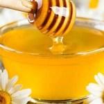 היתרונות הבריאותיים של הדבש