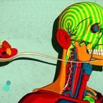 9 דרכים בהן סוכר יכול להרוס את הגוף והנפש