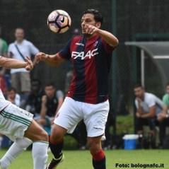 Sergio Floccari, attaccante del Bologna
