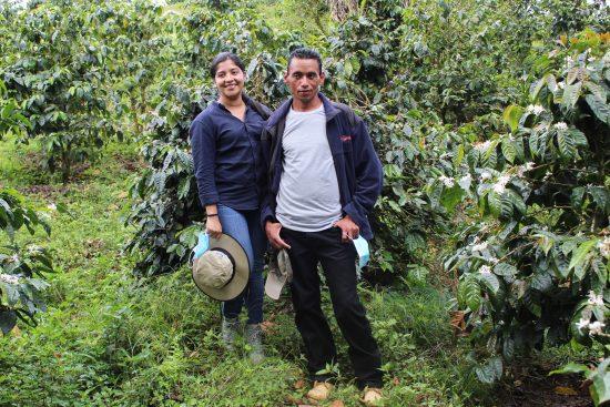 Dos personas se paran entre los cafetos, de las variedades con las que ganaron el concurso.