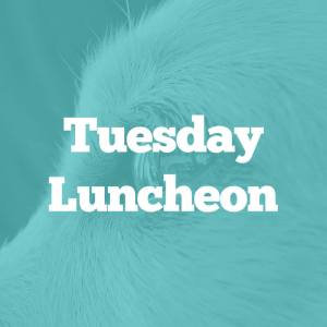 tuesday-luncheon