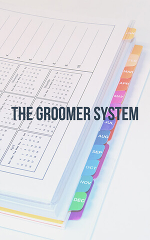 The Groomer System