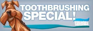 6x2 Toothbrushing Banner