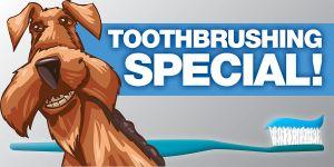 W1802 (4x2 Toothbrushing Banner)