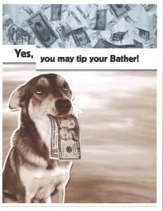 bather_tip