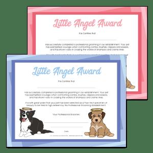 Modern Little Angel Award
