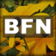 bfn_icon_fc_90x90