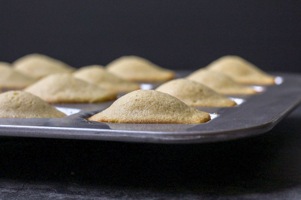 madeleines after baking, showing the hump back